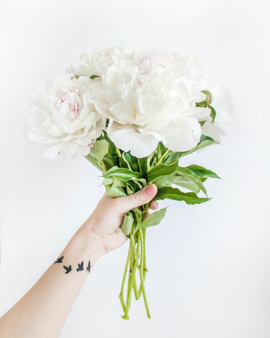 Hello may. #hellomay #springvibes #springflower #majowka2021 #flowers #flowerpower #feminine #delicate #may #witajmaj #majowo #maj #maj2021 #may2021 #mayflowers #whiteflowers #purebeauty